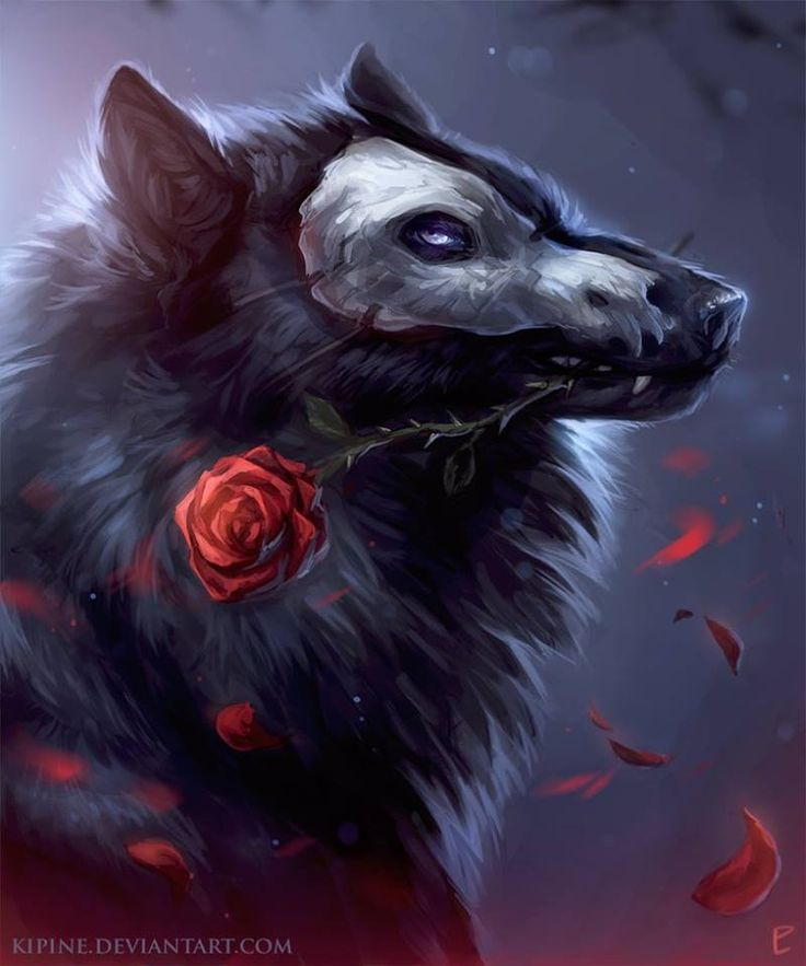 (Open rp, werewolf phantom of the opera, yes I know it sounds stupid but I have ideas for it! Anyone wanna? Be Christine :) )
