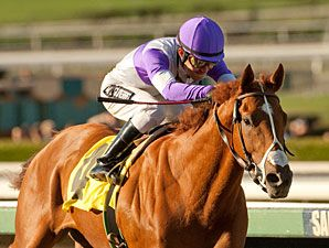 I'll Have Another | A Surprise No More - 2012 Robert B. Lewis Stakes Winner