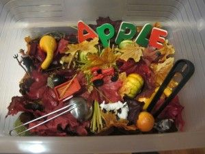 "September Sensory Tub. I like the idea of theming a sand table by the month of the year that it is! For example, to do a ""September themed"" tub, you could get the kids to go out and find different natural object or materials that they feel match the month of September, such as leaves, sticks, etc.."