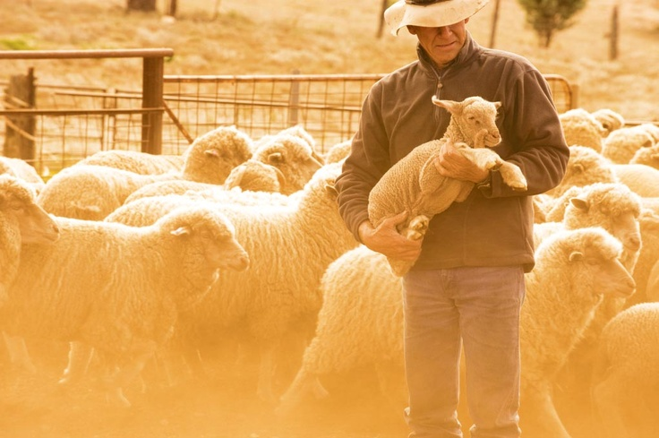 This fourth-generation South Australian sheep property has diversified into a variety of tourism experiences, minimising the financial effects of the drought.