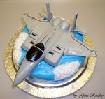 Fighter Jet Cake by *ginas-cakes on deviantART