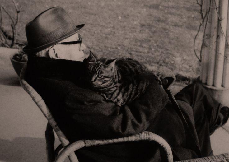 Chaplin-images-videos