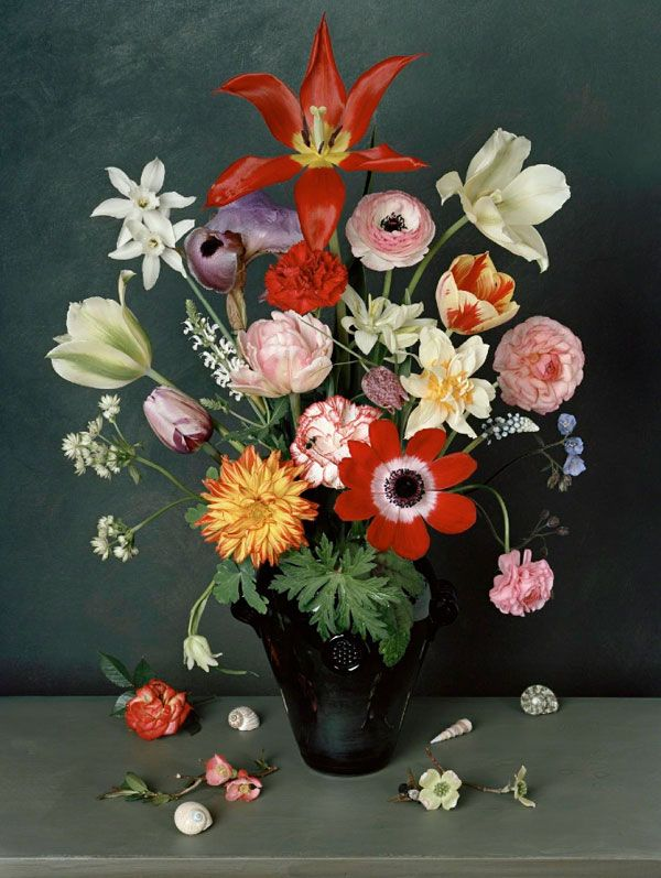 Photo Recreations of Still Life Paintings by Sharon Core