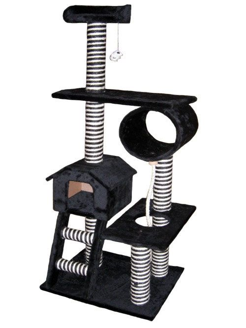 GPC_F44 Kitty Gym/ $129.99 plus free shipping!!!!!!!!! Sounds like a deal to me.