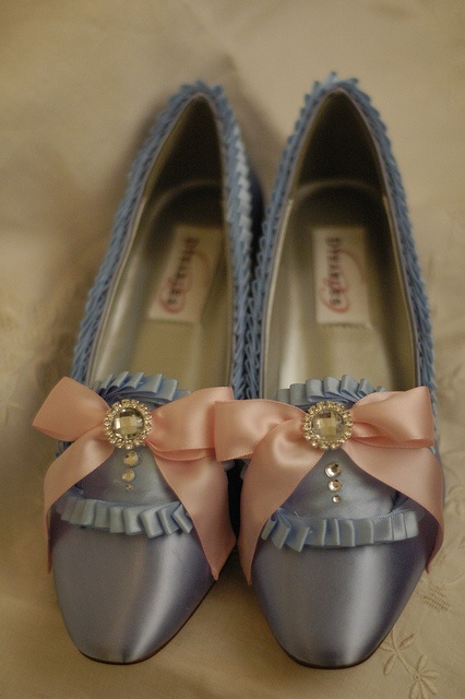 Marie Antoinette shoes - blue and pink. These are the classic style.