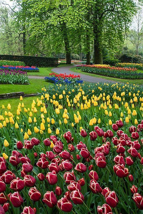 Inspirational Keukenhof Gardens Amsterdam Netherlands The entrance to my house