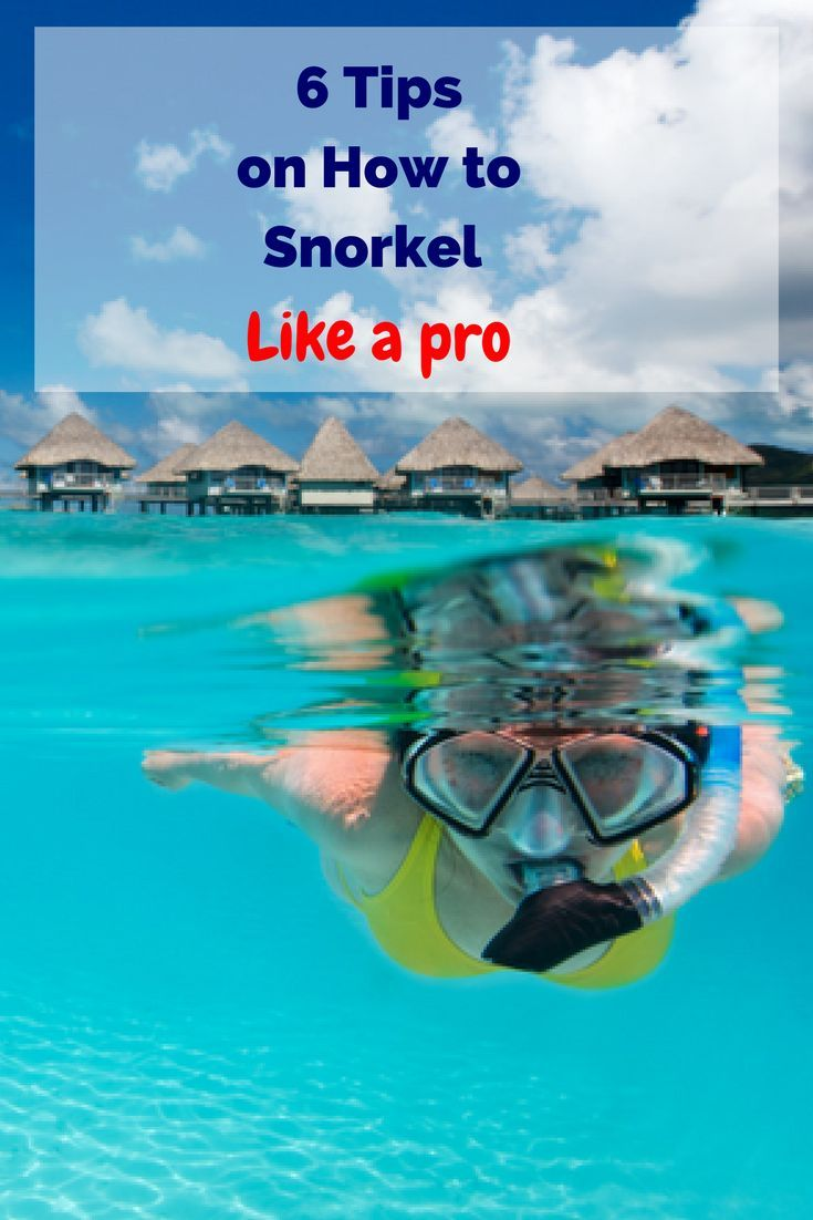 , at your local beach at home or anywhere in between, you will want to make the most of your time in the water. on holidayWhether you are snorkelling