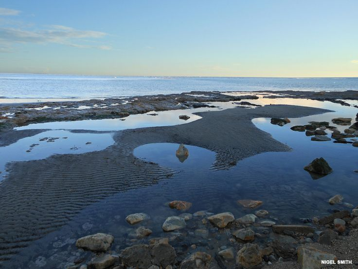 Rock Pools at Bembridge, Isle of Wight. Photo by Nigel Smith