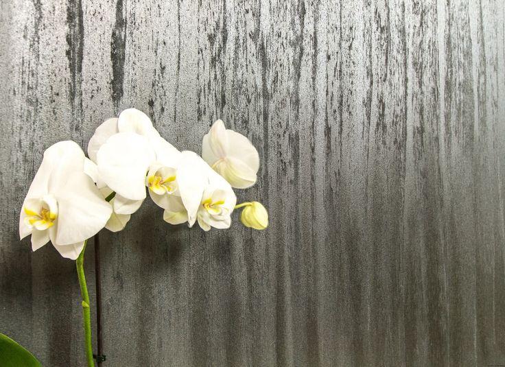 GLASSER Farba dekoracyjna zestaw do 6m2