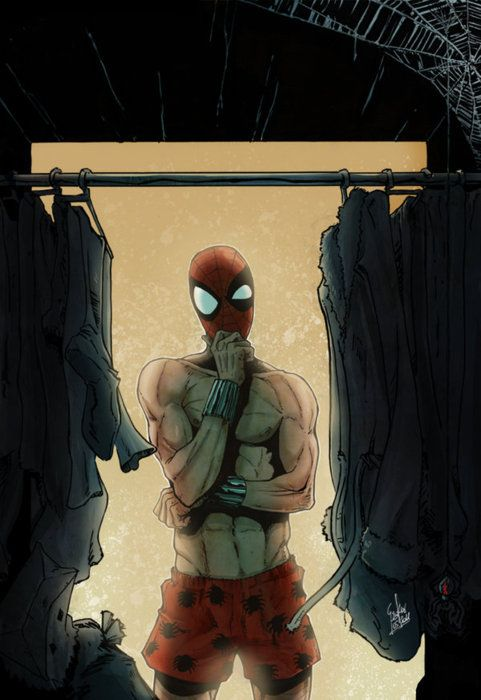 Hard Choices, Spiderman maybe you need a new bedroom wardrobe?