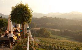 Königlich südsteirisch: ein Fünf-Sterne-Wein.  Sauvignon Blanc Royal, 2011, Skoff Original. - http://www.dieweinpresse.at/sauvignon-blanc-royal-2011-skoff-original/