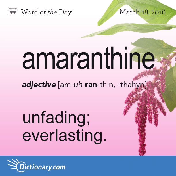 Dictionary.com's Word of the Day - amaranthine - unfading; everlasting: a woman of amaranthine loveliness.