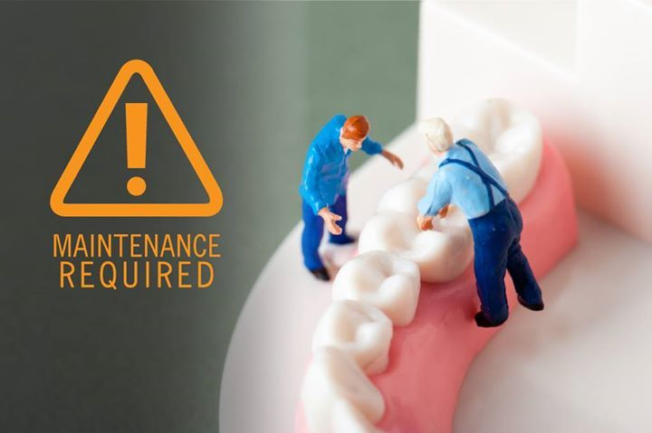 Did you know that teeth are the only part of our body that can't repair itself? Maintain them! - Around the Mountain Pediatric Dentistry | Flagstaff AZ | http://ift.tt/1Vp5EXi