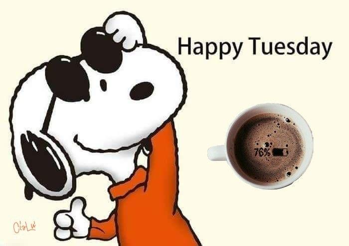 Buon Martedì