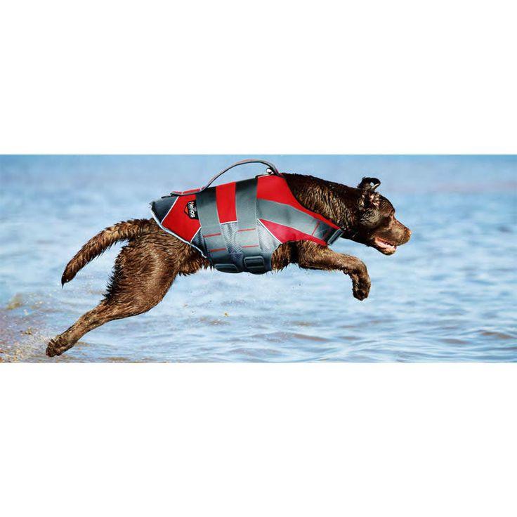 Capa impermeable Perro Chaleco Salvavidas Chaleco Salvavidas de Surf Hound Protector de Perro Natación Preservador SPLASH EXPLORE 3 M REFLEXIVO en Chaquetas para perro de Hogar y Jardín en AliExpress.com | Alibaba Group