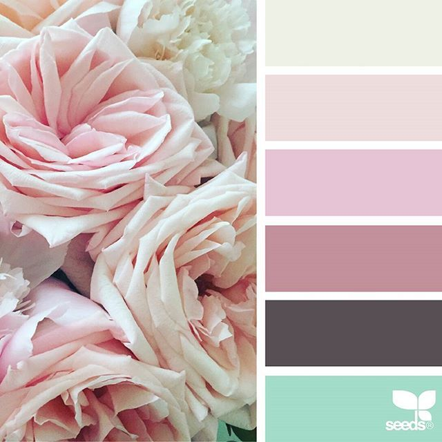 today's inspiration image for { flora hues } is by @clangart ... thank you, Chantal, for another breathtaking #SeedsColor image share!