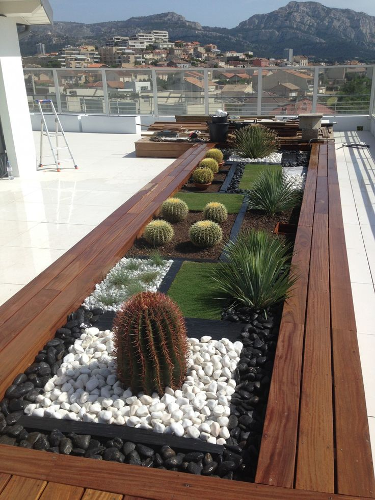 Rooftop garden and landscaping