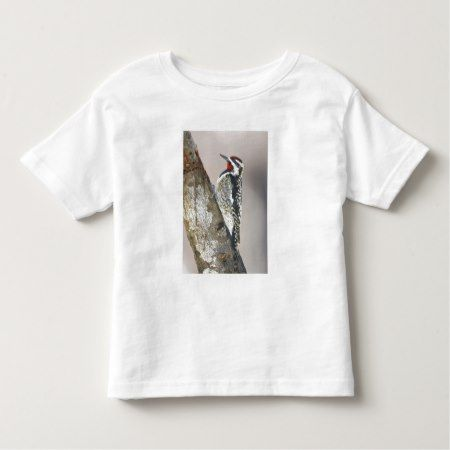 Yellow-bellied Sapsucker male feeding on sap Toddler T-shirt - click to get yours right now!