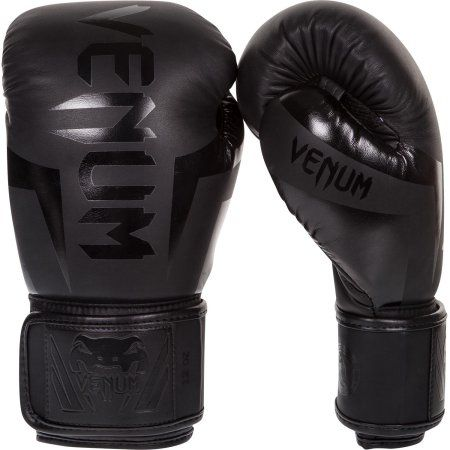 Black Lion Sports Martial Arts Kick Boxing Glove 10 oz