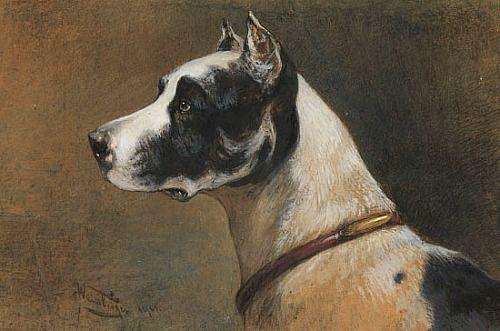 Anton Weinberger German Mastiff 1901