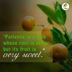 Quotes: Be Patient #pic #Quotes #Motivation https://t.co/SCfK3yVkIu