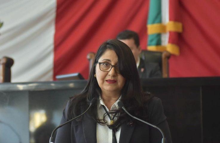 Pide diputada crear Fondo Estatal para la Transición Energética del Campo   El Puntero
