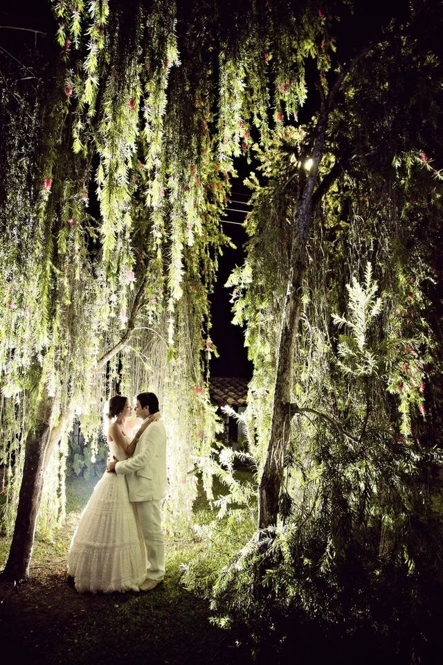 under a weeping willow tree...beautiful. - beautiful lighting