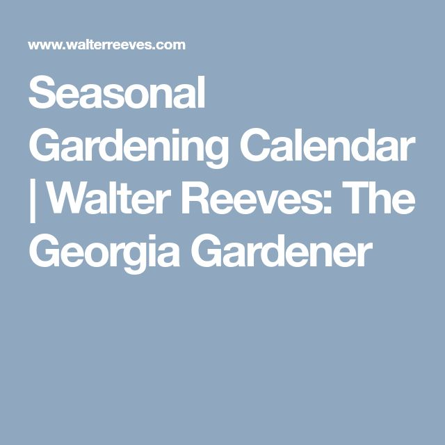 Seasonal Gardening Calendar | Walter Reeves: The Georgia Gardener