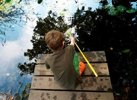 Pond dipping and fishing leasons