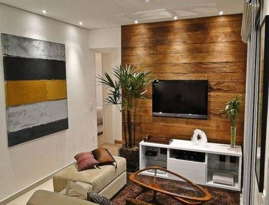 Apartments Small Room Layout Wooden Wall Backdrop Tv White Cabinets Shelves Fur Rug Brown Sofa Mural Table Glass Classic Ideas Interior Design Tiny