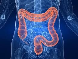 Have you ever thought if unhealthy food remains inside your body? What harms it may cause. Cramps, pain in the stomach and feeling bulky. Purification of colon is essential to remove toxins of the body which are stored in the colon. Purified colon revitalizes the body as well as skin. Buy this book and learn techniques of a healthy body. http://best-colon-cleanse-reviews.com/?id=4141301