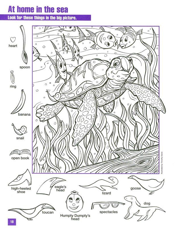 sea turtle hidden pictures coloring page