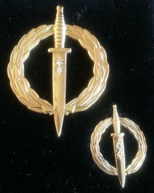 Recce Operator badge 20 years active service