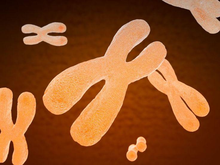 Οι μεταλλάξεις στο μη κωδικοποιητικό DNA υπεύθυνες για πολλές ασθένειες
