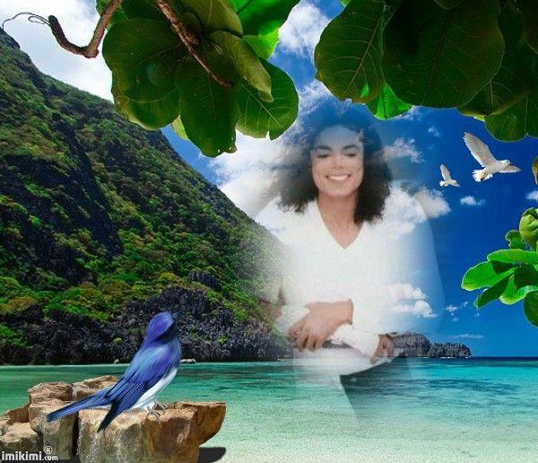 RF-Paradise Island