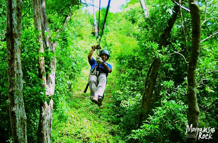 Replace the fear of the unknown with the curiosity of experiencing a green adventure...