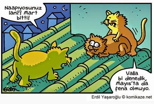 Karikaturiks   Gülümse biraz.!: Mayıs'ta da Oluyormuş :)) #karikatür