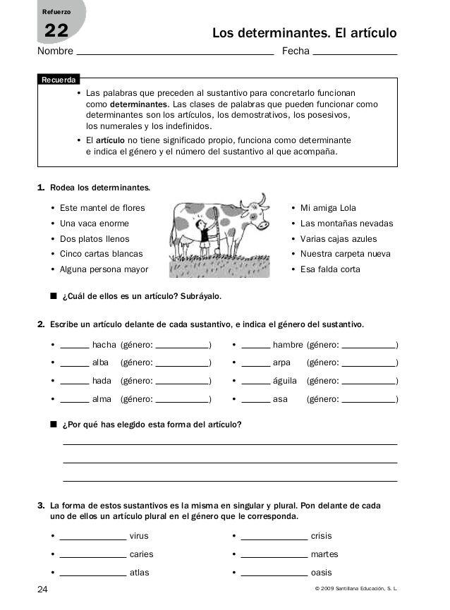 24 © 2009 Santillana Educación, S. L. Los determinantes. El artículo 1. Rodea los determinantes. 3. La forma de estos sust...
