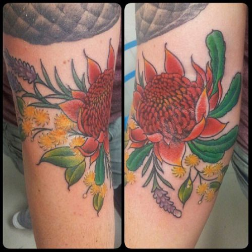 wattle tattoo - Google Search