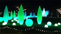 The Atlanta Botanical Gardens at Christmas. # interiorhomescapes # interior homescapes # atlanta botanical gardens # christmas lights