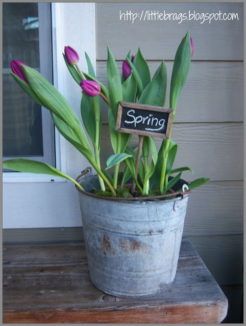25 best ideas about bucket centerpiece on pinterest for Large galvanized buckets for flowers