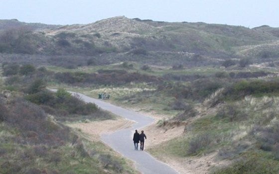 Haarlem is less than ten kilometres away from the Dutch coast. The Kennemerduinen dunes separate the city from the beach. It is a big fund field rich in flora and fauna. If you want to take a trip to the beach on a beautiful summer day, rent a bicycle and