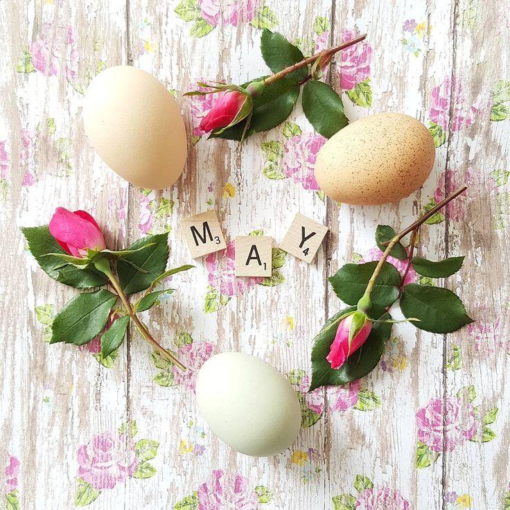 "1,569 Likes, 37 Comments - Penny/Happy Days Farm® (@happydaysfarm) on Instagram: ""Hello May! 🌹 . . . . . #eggvignette . . . . #pocket_pretty #pocket_flowers #flatlay #flatlayforever…"""