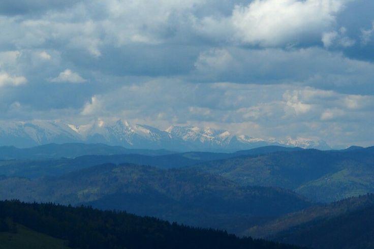 W drodze do bacówki nad Wierchomlą - widok na Tatry