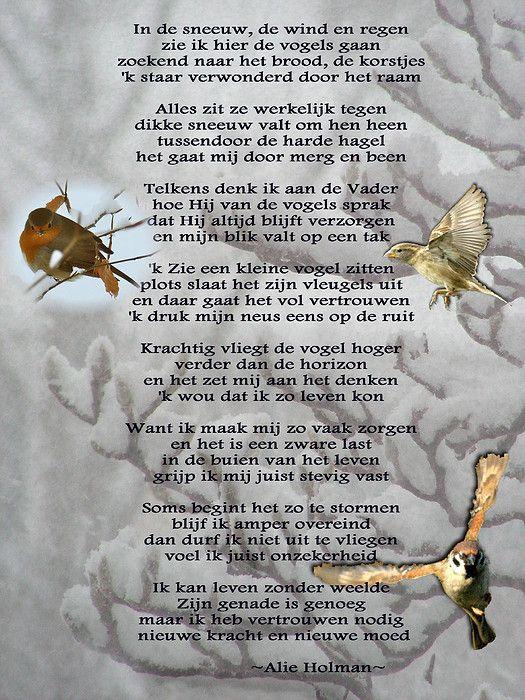 In de wind, de sneeuw, de regen. Gedichten http://www.gedichtensite.nl. Afbeeldingen met gedichten: http://www.fotogedichten.nl