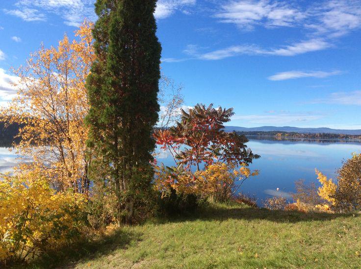 Beautiful Cluculz Lake, BC