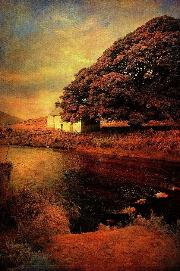 On The Shore. Rural Ireland by Jenny Rainbow