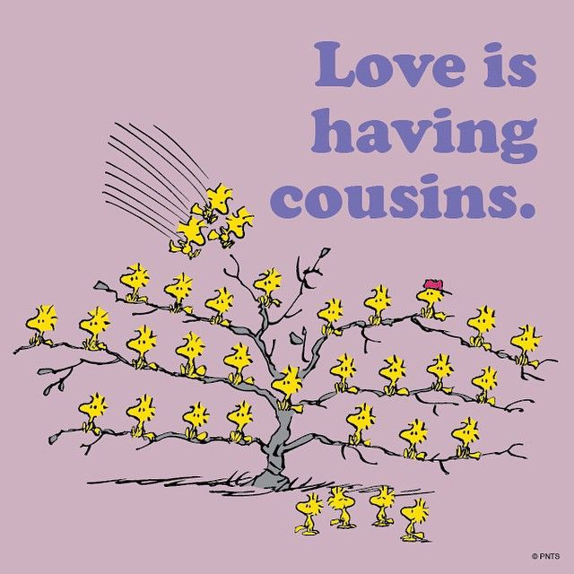 """Love is having cousins."""