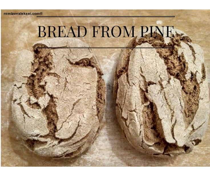 How to make Bread from Pine Bark. plant-based bread. vegan food. vegan bread. веганский хлеб. хлеб без вреда. bread recipe.