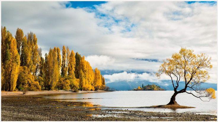 Fall Iphone Wallpaper Hd: Best 25+ Autumn Iphone Wallpaper Ideas On Pinterest